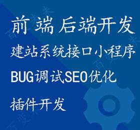 php网站系统开发前端开发web开发